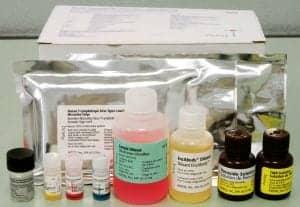 Testing/Diagnostics
