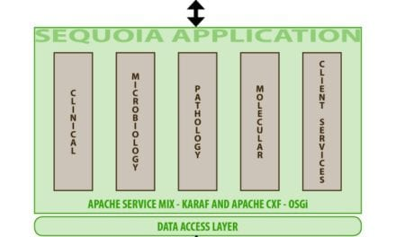 LIS Enables Big Data Mining