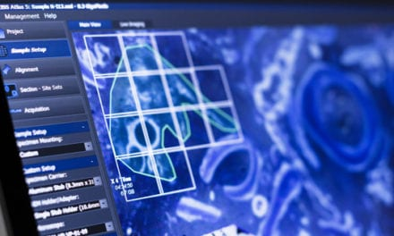 Integrated System Acquires, Analyzes Multiscale Images