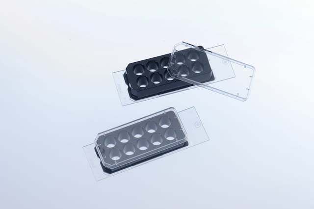 Glass Coating Encourages Cell Culture Growth