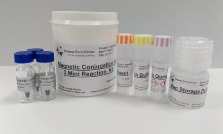 Kit Enables Conjugation of Antibodies to Magnetic Particles