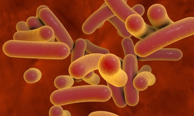 Drive-thru Type Test to Detect Viral Infections in Bacteria