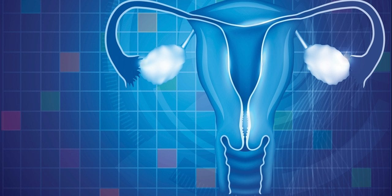 Anti-Müllerian Hormone Testing