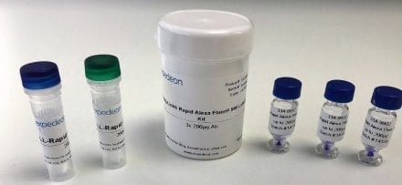 Five Alexa Fluor Labels Added to Antibody Labeling Kit