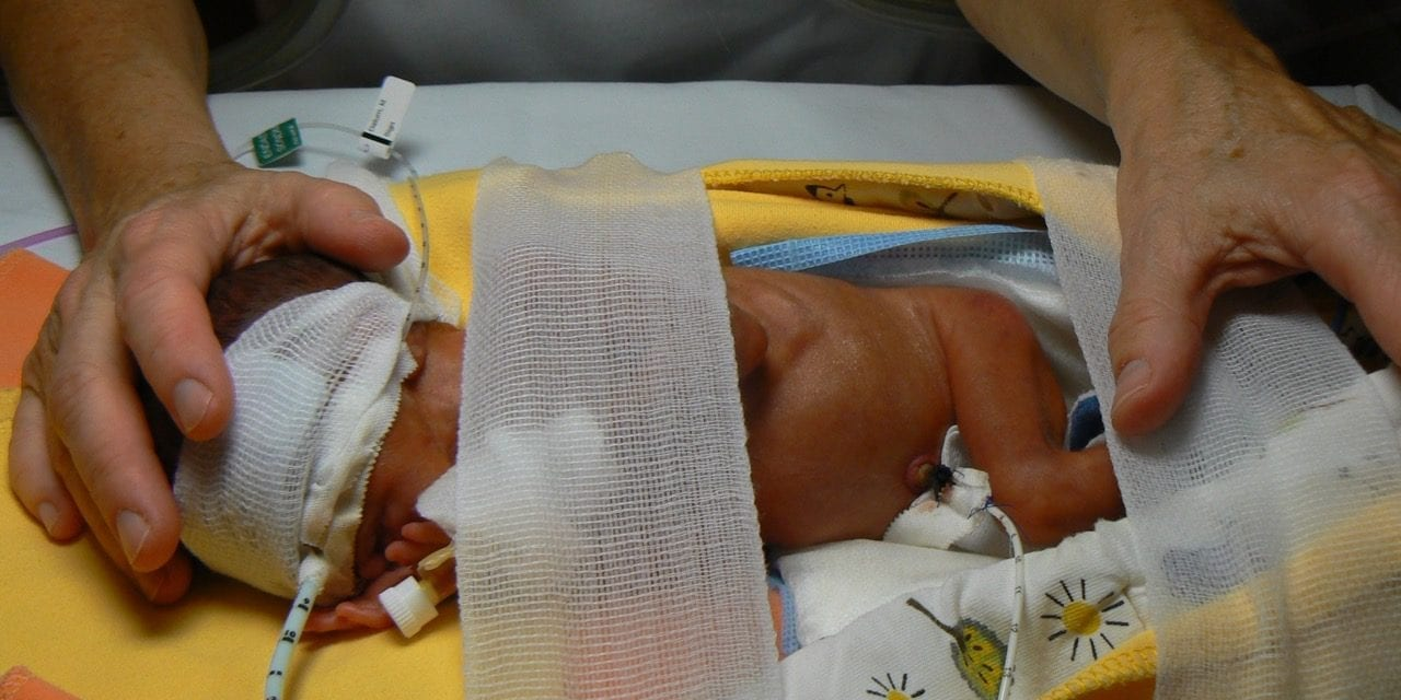 Study Reveals Dramatic Development of Immune System after Birth