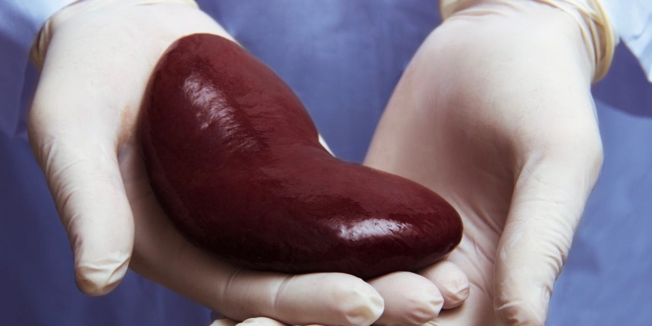 Blood Biomarker Predicts Kidney Rejection and Suggests How to Best Manage Post-Transplant Patients