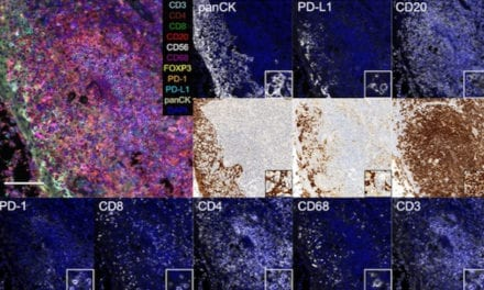 Study Demonstrates Microfluidic Technology for Multiplexed Sample Staining