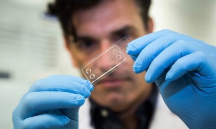 'Lab-on-a-Chip' Drives Search for New Drugs to Prevent Blood Clots