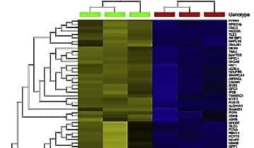 Next-Generation Sequencing Module Enhances Productivity of Bioinformatics Software