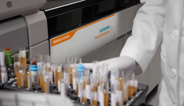 FDA Authorizes First Tests to ID Antibodies from Past Covid-19 Infections
