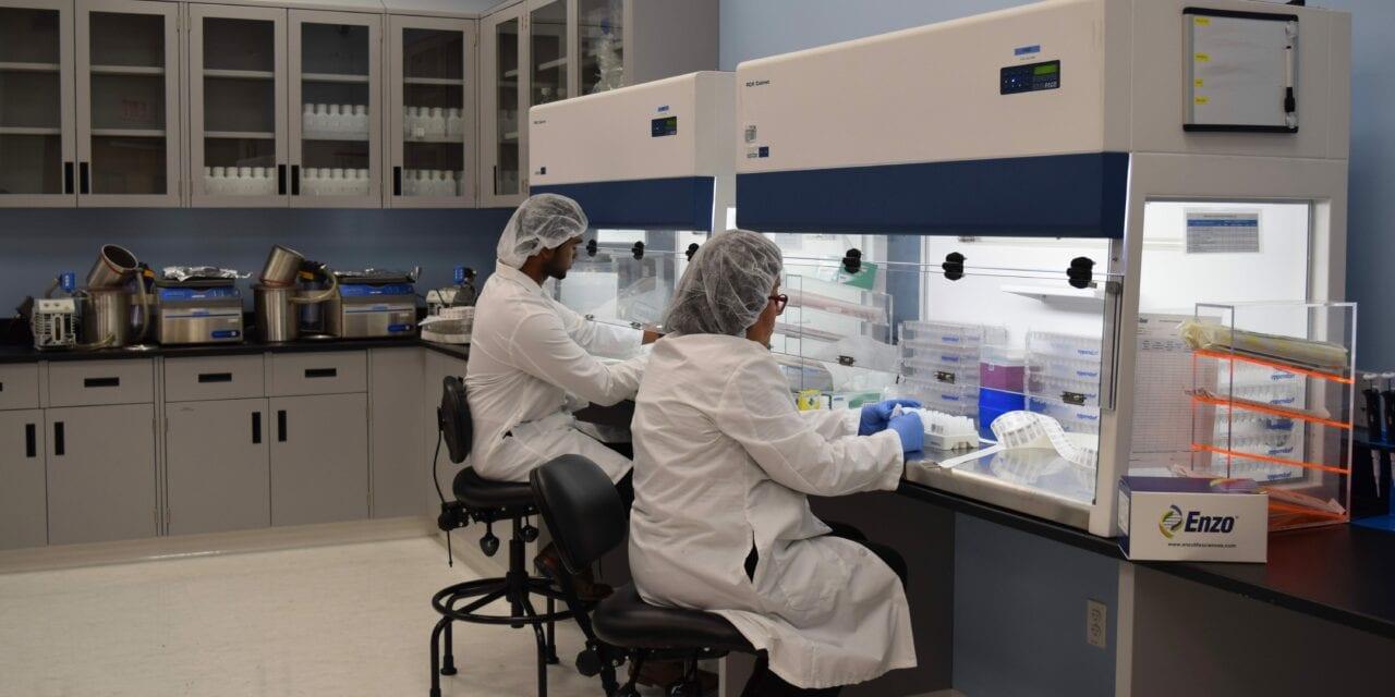 Enzo Biochem Receives EUA For Testing Pooled Samples on Three Platforms