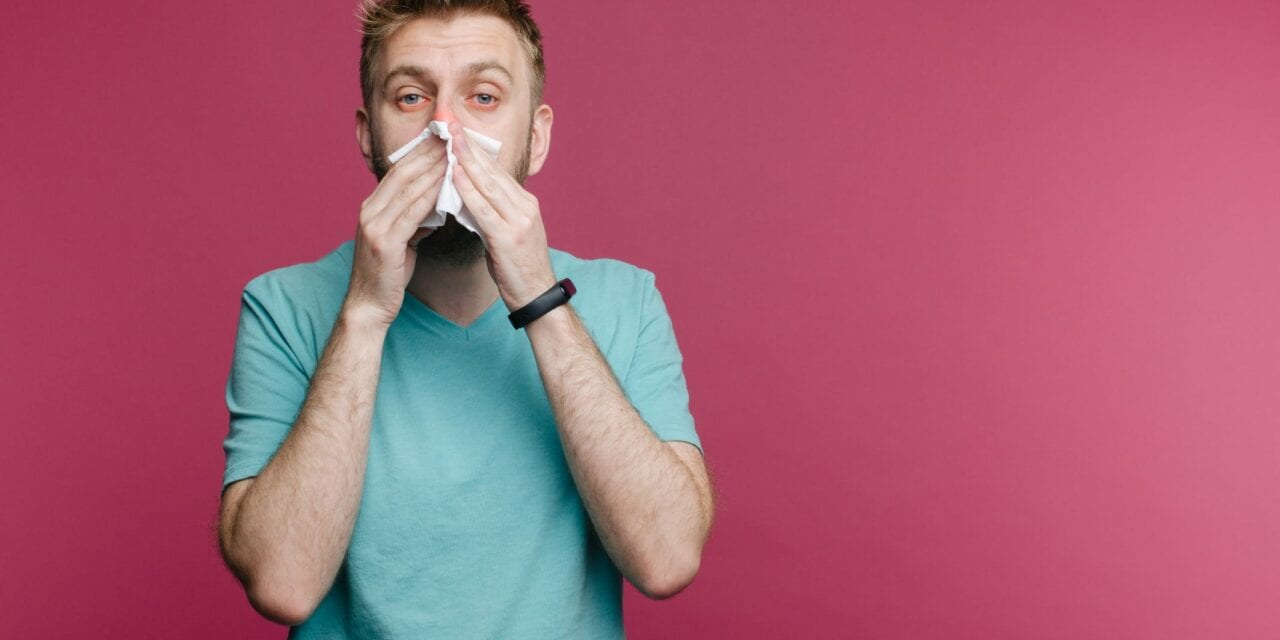 The Pandemic Broke the Flu