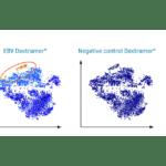 Immudex Launches dCode Dextramer (RiO) Reagents