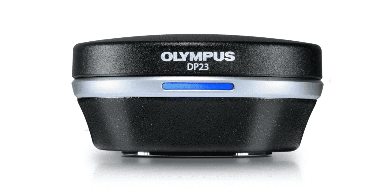 Powerful Olympus DP28 and DP23 Microscope Cameras for Life Science Imaging