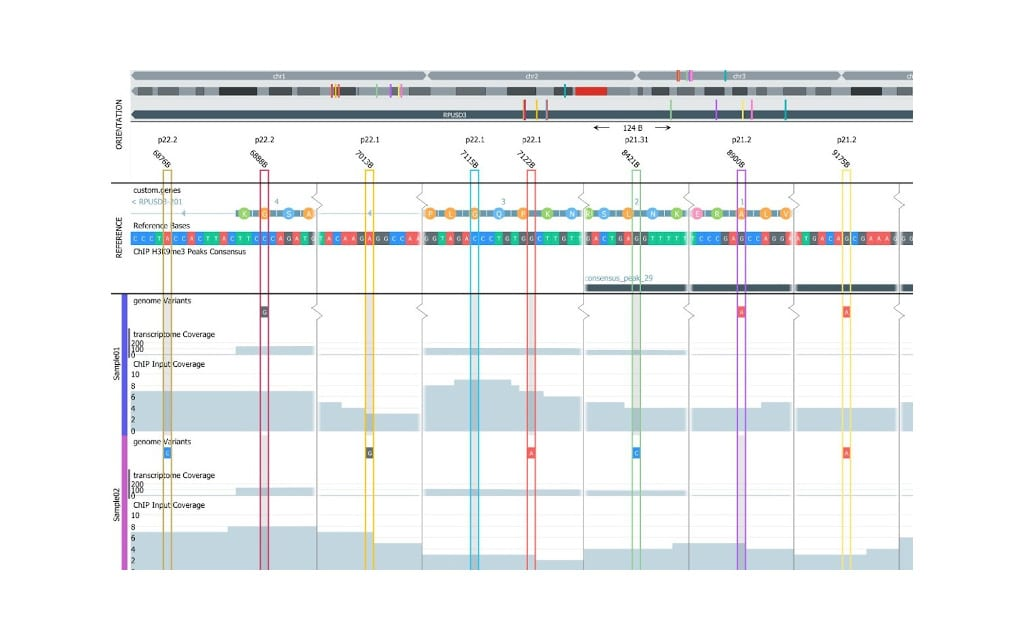 Qlucore Releases QOE 3.7 with ChIP-seq and Biomarker Support