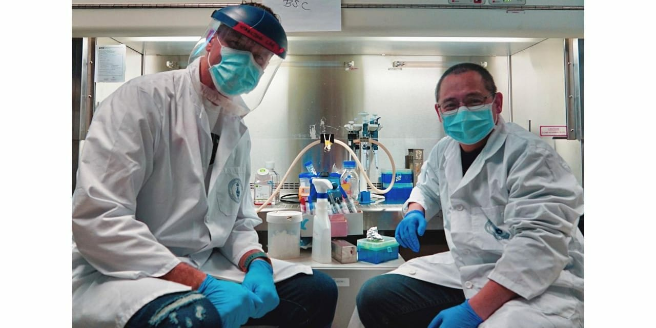 Toronto Researchers Develop Rapid Low-Cost Method to Measure Covid-19 Immunity