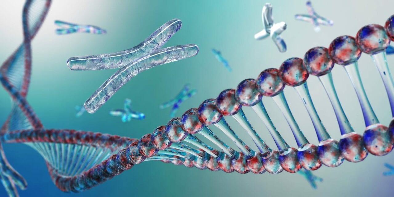 Gene Linked to Congenital Heart Disease Identified