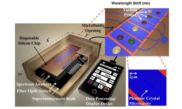 Optical Biosensors Offer Rapid POC COVID-19 Detection