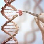 In The DNA: Shortcut to Identify Pathogens Found