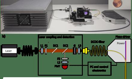 Multimodal Fiber Probe Developed for In Vivo Tissue Diagnostics