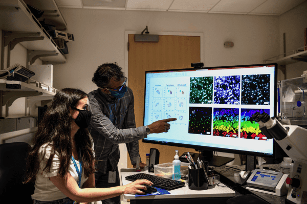Long-Awaited Alzheimer's Disease Diagnostic May Be a Reality